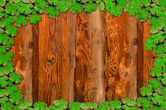 贺卡邀请框架糖果店三叶草在土气基地的乳香树脂绿色的装饰风化了杉木板基地celebrati 库存例证