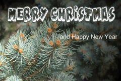 贺卡`圣诞快乐`和`新年快乐` 免版税图库摄影