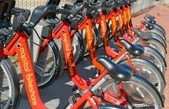 资本bikeshare,在华盛顿特区的一个自行车份额节目 免版税库存图片