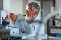 资深化学教授/医生在实验室 免版税库存照片
