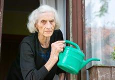 资深在房子窗口的妇女浇灌的花 免版税库存图片