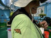 资深夫人在波诺马,加利福尼亚喜欢喂养蝴蝶在洛杉矶郡市场 免版税库存照片
