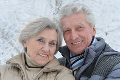 资深夫妇在冬天 免版税库存图片