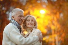 资深夫妇在秋天公园 库存照片