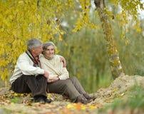 资深夫妇在秋天公园 免版税图库摄影