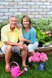 资深夫妇从事园艺。 库存照片