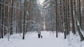 资深妇女北欧走,享受户外在冬天公园 查出的背面图白色 股票录像