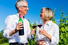 资深妇女和人饮用的酒在葡萄园里 图库摄影