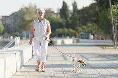 资深妇女和她的狗 免版税图库摄影