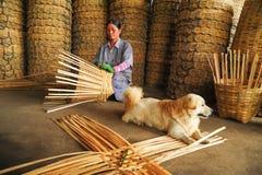 资深妇女帆布篮用手与躺下的狗 免版税库存图片