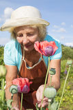资深妇女放松和照料花在庭院里 库存照片
