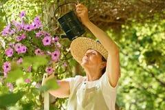 资深妇女浇灌在一个垂悬的罐的花 库存图片
