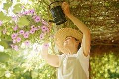 资深妇女浇灌花 免版税库存图片