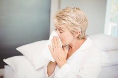 资深妇女覆盖物鼻子,当在家时打喷嚏 免版税库存照片
