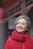 资深妇女画象在一个繁体中文大厦之外的 库存图片