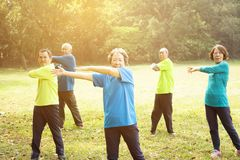 资深小组朋友锻炼在公园 库存图片