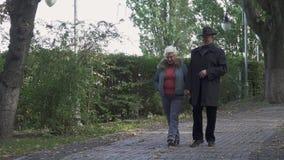 资深愉快的男人和妇女步行在公园 股票视频