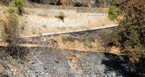 资深成人走在被烧的土地 库存图片