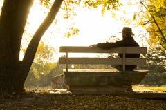 资深成年男性周道地坐在秋天的公园长椅 免版税库存图片