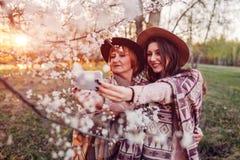 资深拥抱和采取selfie的母亲和她的成人女儿在开花的庭院里 母亲` s日概念 家庭价值观 库存照片
