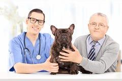 资深摆在与在兽医实践的狗 免版税图库摄影