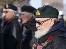 资深有胡子的退伍军人和其他人特写镜头在软的焦点背景中 免版税库存图片