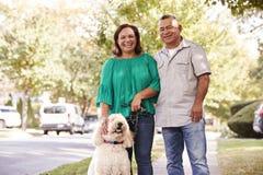 资深沿郊区街道的夫妇走的狗画象  图库摄影