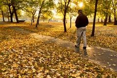 资深男性在五颜六色的秋天早晨的公园周道地走。 图库摄影