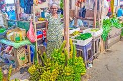 资深香蕉卖主 图库摄影
