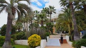 赌博娱乐场在棕榈树中的de蒙特卡洛,人运载与金钱的巨大的袋子打赌 影视素材