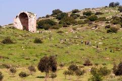 赌注Guvrin国家公园以色列 库存照片