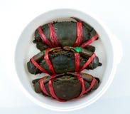 赛拉serrata顶视图  三个新鲜的螃蟹在栓与红色塑料绳索并且被安排在通入蒸汽的容器的整洁的行 免版税库存图片