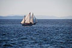 赛船会风帆 库存照片