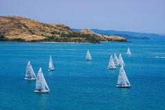 赛跑在哈密尔顿岛的游艇 免版税库存图片