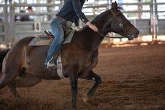 赛跑在圈地的马和车手桶 免版税库存照片