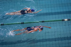 赛跑在游泳池的女性游泳者 图库摄影