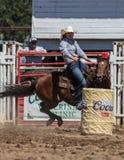 赛跑女牛仔的桶 免版税图库摄影