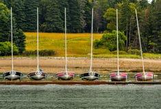 赛跑有数字的风船,靠码头 库存照片