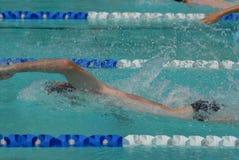 赛跑游泳者的自由式 库存照片