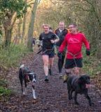 赛跑者和狗 免版税图库摄影