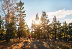 赛跑者在森林里 免版税库存照片