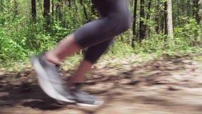 赛跑者奔跑的阶段在森林公路的 股票视频
