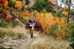 赛跑者skyrunner跑与在一个山行迹的拐杖在秋天森林里 免版税库存照片