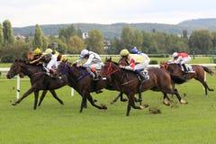 赛马在布拉格 免版税库存图片