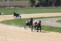 赛马在竞技场Sibirskoe podvorie 免版税库存照片