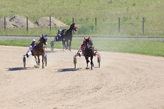 赛马在竞技场Sibirskoe podvorie 免版税图库摄影