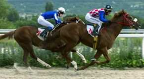 赛马奖的以纪念青年天在Pyatigor 库存图片