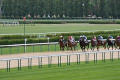 赛马,多维尔 免版税图库摄影