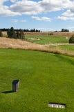 赞成发球区域在高尔夫球场 免版税库存图片