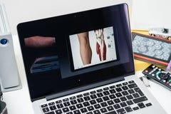 赞成苹果电脑新的iPad, iPhone 6s, 6s加上和苹果计算机电视 免版税图库摄影